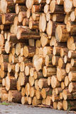 Log pile Royalty Free Stock Image