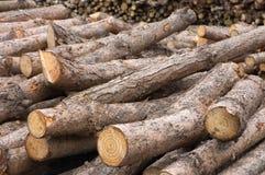 Log Pile Royalty Free Stock Photo