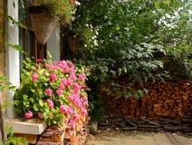 Log pile and geraniums Royalty Free Stock Image