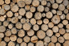 Log Pile Stock Photo