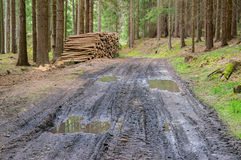 Log pile stack forest wood tire track mud road. Offroad way puddle landscape background Royalty Free Stock Photos