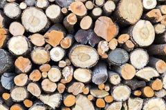 Log pile Royalty Free Stock Image
