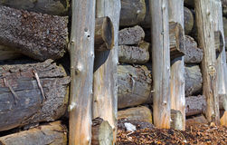 Log pilings for erosion prevention Royalty Free Stock Photo