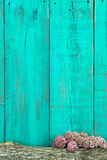 Log and pink flowers border antique teal blue wooden fence Stock Photography