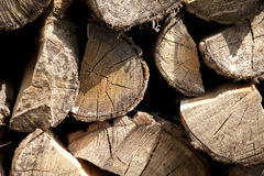 Log protruding from pile Royalty Free Stock Image