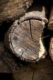 Log protruding from pile Royalty Free Stock Photos
