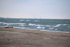 Log que negligencia o Lago Michigan Imagens de Stock Royalty Free
