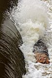 Log Rolls Afront Canal Waterfall Stock Images