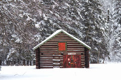 A log shed in the snow. A red and green log shed in front of trees surrounded by snow Stock Image