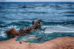 Log on the shore of the blue sea, sandy beach waves Royalty Free Stock Photography