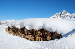 Log and snow 2 Stock Photography