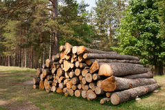Log stack Royalty Free Stock Images
