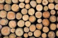 Log Stack Stock Photo