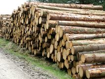 Log stack stock photography