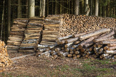 Log Stacks Stock Photo