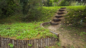 Log Steps. Wooden log steps in forest Royalty Free Stock Images