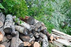 Log stock Stock Photos