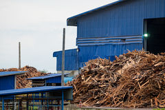 Log in stock wood factory. Industrial royalty free stock images