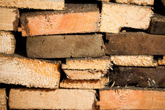 Log stockpile Stock Image