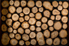 Log texture Stock Images
