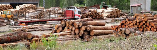 Log timber trunks wooden industry stock Stock Photos