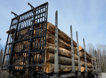 Logging truck trailer loaded with logs Stock Photo