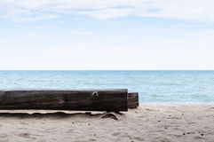 Log Tree Chair At Seaside Stock Photography