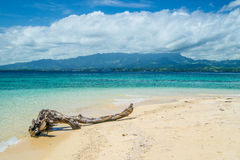 Log on tropical island beach Royalty Free Stock Photos