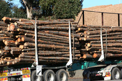 Log truck Royalty Free Stock Photography