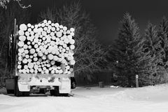 Log truck loaded with logs. Tractor trailer loaded with cut logs in black and white Royalty Free Stock Images