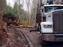 Log Truck with Skidder Stock Photo