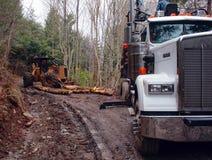 Log Truck with Skidder. Skidder moving logs toward logging truck for pickup Stock Photo