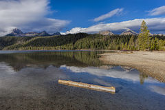 Log in the water of Redfish Lake. Stock Photo