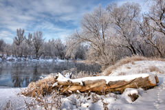 Log on the winter river Stock Photography
