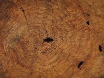 Log Wood. Isolated texture background royalty free stock photography