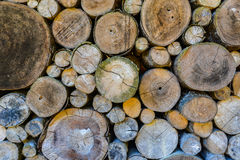 Log wood wall background. Stock Photo