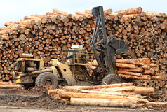 Log Yard Stock Images