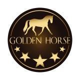 Loga wektorowy wizerunek złoty koń & gwiazdy na ciemnym tle Koński loga szablon Zdjęcia Stock