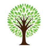 loga zielony drzewo royalty ilustracja