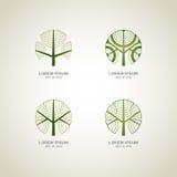 loga zielony drzewo Zdjęcia Royalty Free