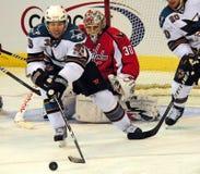 Logan Kleermakerijen, Debutant NHL Stock Foto's