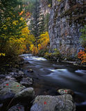 LoganRiver. The Logan River, in Utah, photographed during the autumn season Royalty Free Stock Photography