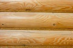 Logarithme naturel en bois Photo stock