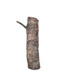 Logarithme naturel en bois avec un noeud Photos libres de droits