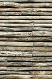 Logarithmes naturels photographie stock libre de droits
