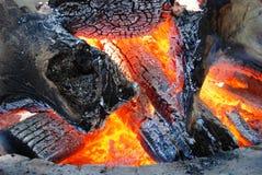 Logarithmes naturels brûlants Photos libres de droits