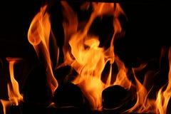 Logarithmes naturels brûlants Images libres de droits