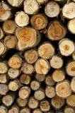 Logarithmes naturels d'un arbre sur le découpage de bois de construction. Image libre de droits