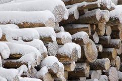 Logarithmes naturels de bois. Photographie stock
