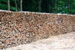 Logarithmes naturels de bois Image libre de droits
